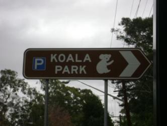 Koala Park ~   It's just a short train ride from Sydney to the Koala Park Zoo.