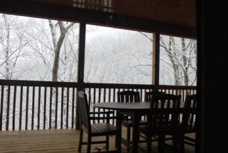 Back Deck View ~ Still snowing