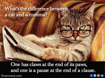 Comma Cat ~ The Difference Between a Cat and a Comma