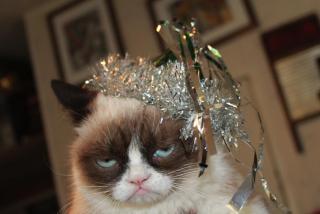 Grumpy Cat with Crown ~  No description included.