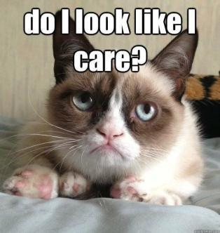 Grumpy Cat - Do I Look Like I Care ~  No description included.