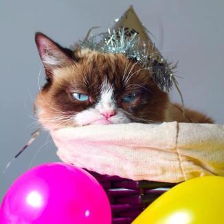 Grumpy Cat Party Time ~  No description included.