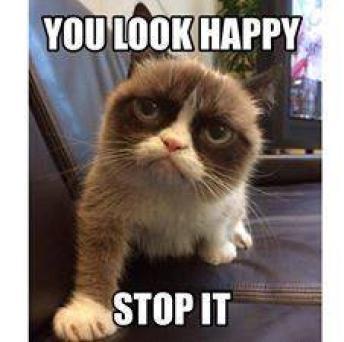Grumpy Cat - You Look Happy ~  No description included.