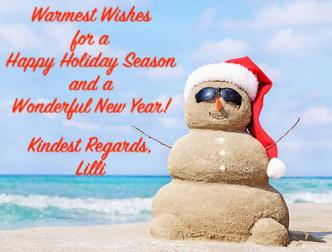 Happy Holidays ~ Holiday Greetings from Florida