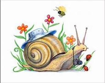 Spring Snail ~  No description included.