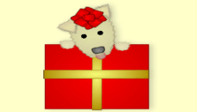 SG Puppy Present