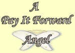 This is an image of my Pay it Forward 'Angel Wings'.