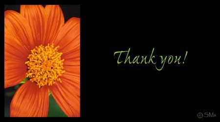 Thank Youuuu