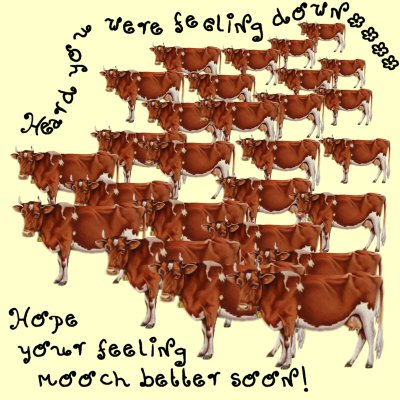 Bovine Get Well cNote