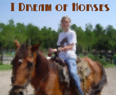 I Dream of Horses header