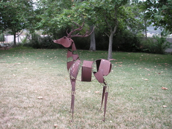 The deer, today!