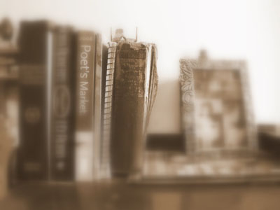 bookshelf of books