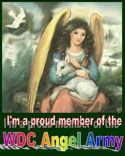 My creative donation to the WDC Angel Army sig library