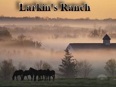 cover for Larkin's Ranch