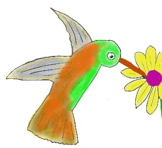 This is for a poem about hummingbirds.