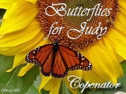 A butterfly given to use on my page by Sherry
