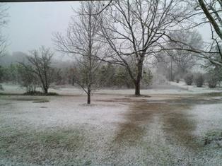 March 1st - snow in Macon, Georgia