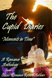 Book Cover for The Cupid Diaries