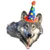A birthday wolf.