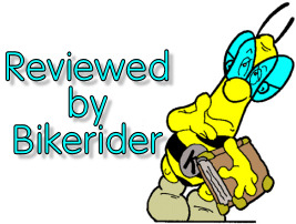 Bikerider's review bee with glasses.