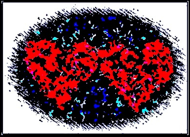 Digital Image of Two Hearts!