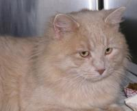 Casper in January '07