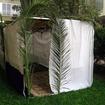 sukkah--a tent for Sukkot