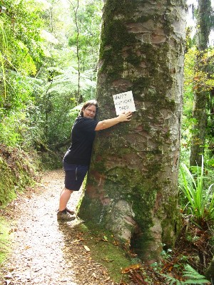 Me, hugging a kauri tree on the Montana Heritage Trail in Waitakere, New Zealand.