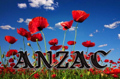 Logo for ANZAC 2013 contest.