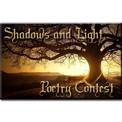 Shadows and Light Contest Banner