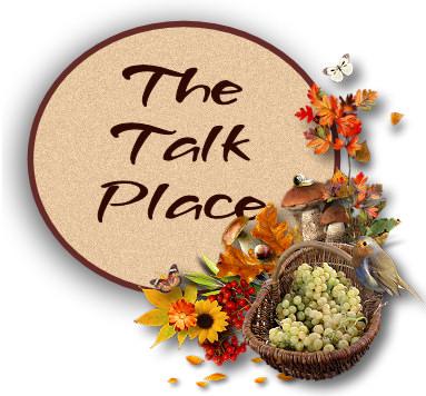 Bird Basket: The Talk Place