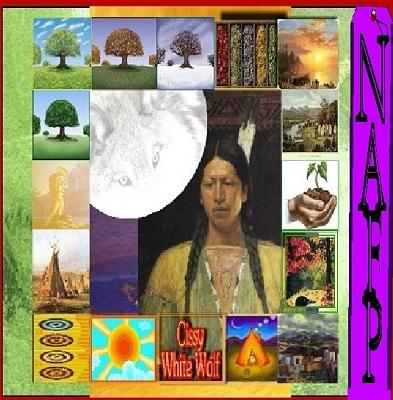 Image for NAFP