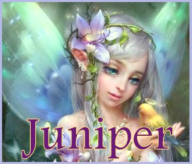 Mandy assigned me this muse, Juniper. I feel she's very much a part of me already.