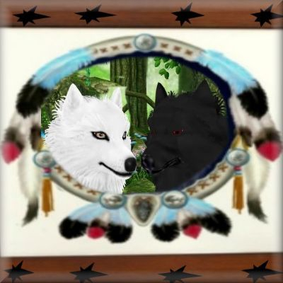 Neat image of a black wolf and white wolf by best friend Angel.