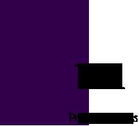 phoebe's fairies Purple