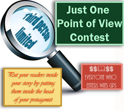 Just One Point of View Contest