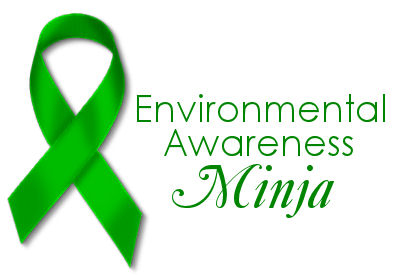 Environmental awarness