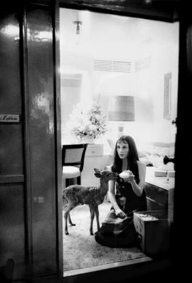 A gift from a member. Audrey Hepburn and her pet deer.