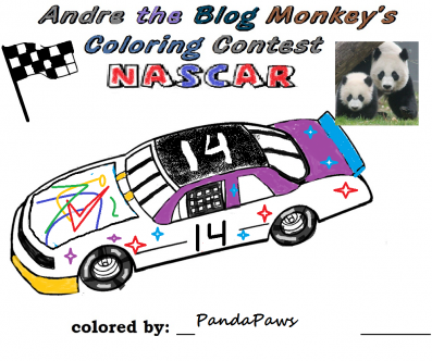 Nascar coloring contest entry - Panda