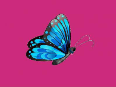 Blue with pink background