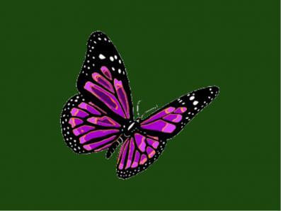 Purple with green bg