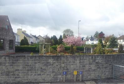 A photograph of a garden.