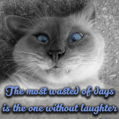 Find some time to laugh each day sig