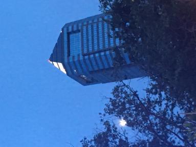 moon over jacksonville