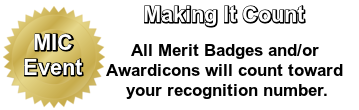 Making all Badges and Awardicons count