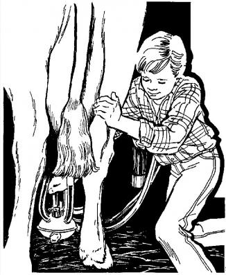 A clip art image of a boy, a cow, and an automatic milking machine