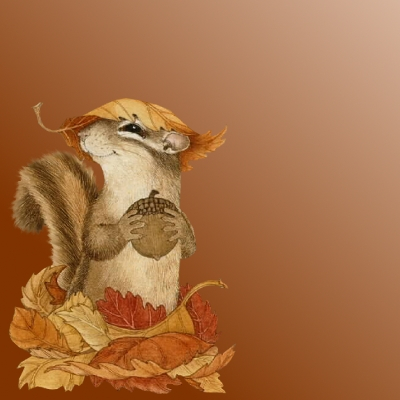 Squirrel ~Fall~