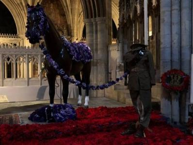 A Display of Remembrance Poppies in Plymouth Cathedral.