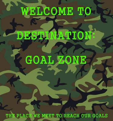 The cover for Destination: Goal Zone