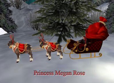 Megan in sleigh Sig with reindeer.